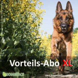 XL Vorteils-Abo 28 x 750g Komplett BARF Menüs