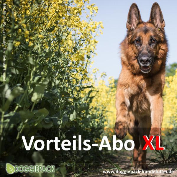 Angeot Barf Menues Abo von Doggiepack
