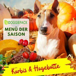 Rind Kürbis & Hagebutte