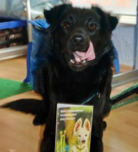 doggiepack_hundefutter_vorfreude_feedback_lecker_hund_mensch