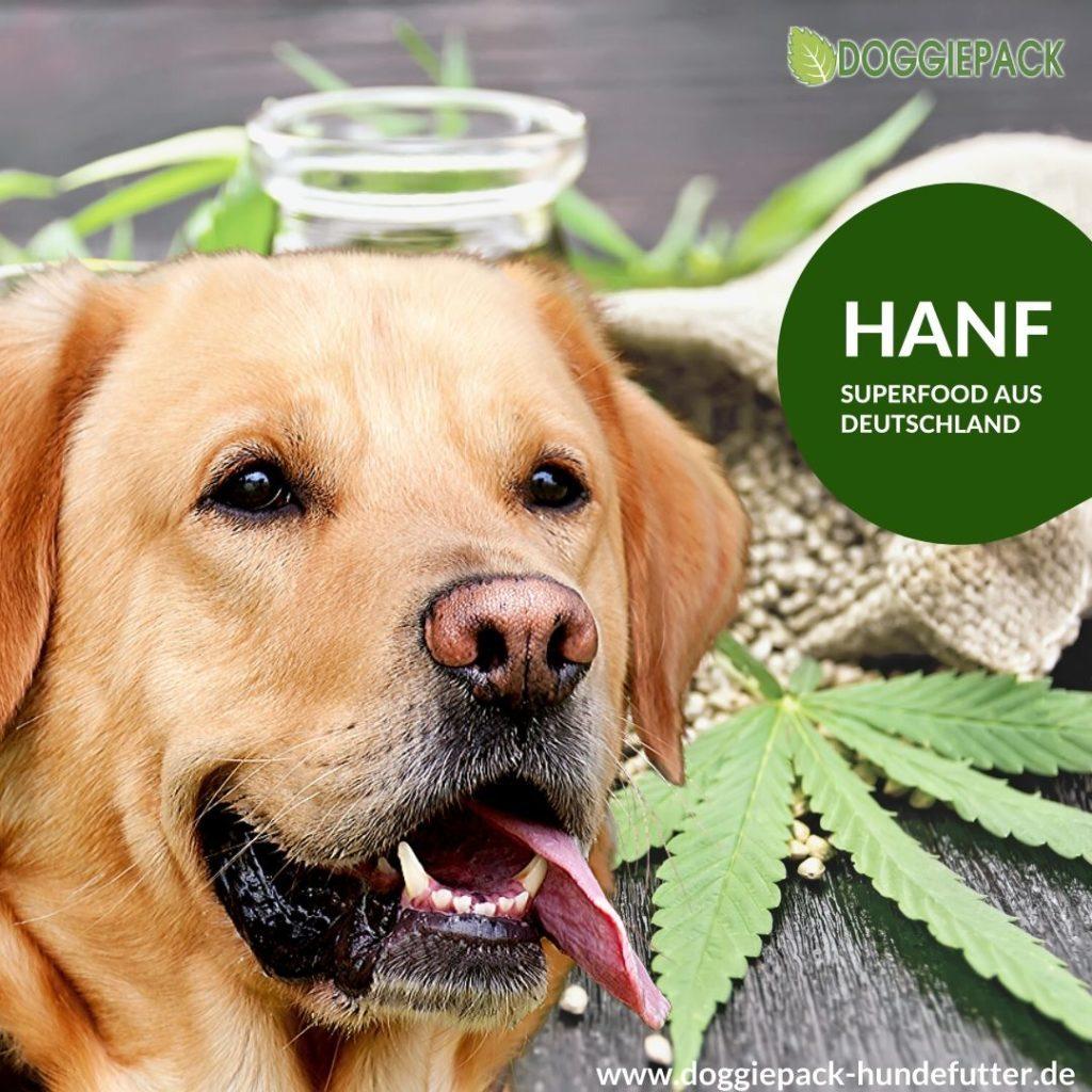 doggiepack_hundefutter_hanf_superfood_deutschland_barf_manufaktur