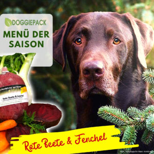 doggiepack_hundefutter_saison_huhn_rote_beete_fenchel_barf