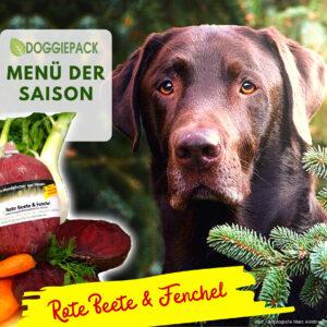 doggiepack_hundefutter_saison_huhn_rote_beete_fenchel_barf