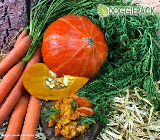 Kürbis Karotte Löwenzahn – BARF Gemüse pur