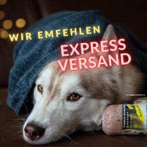 Hundefutter Express Versand