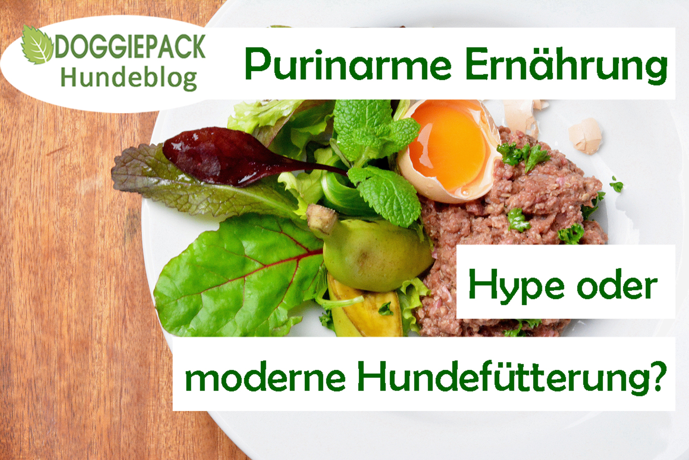 blog_purinarme_ernaehrung_hype_modern_doggiepack