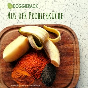 Kraftprotz mit Kurkuma – BARF Obst & Gemüse pur